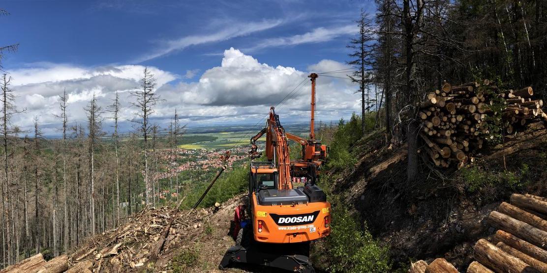 Forstarbeiten am Stumpfrücken