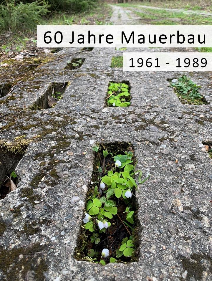 In Gedenken an die Teilung Deutschlands vor 60 Jahren